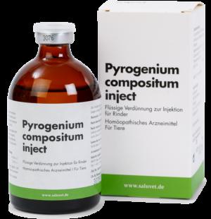 Klein-Pyrogenium-compositum-inject-684-734